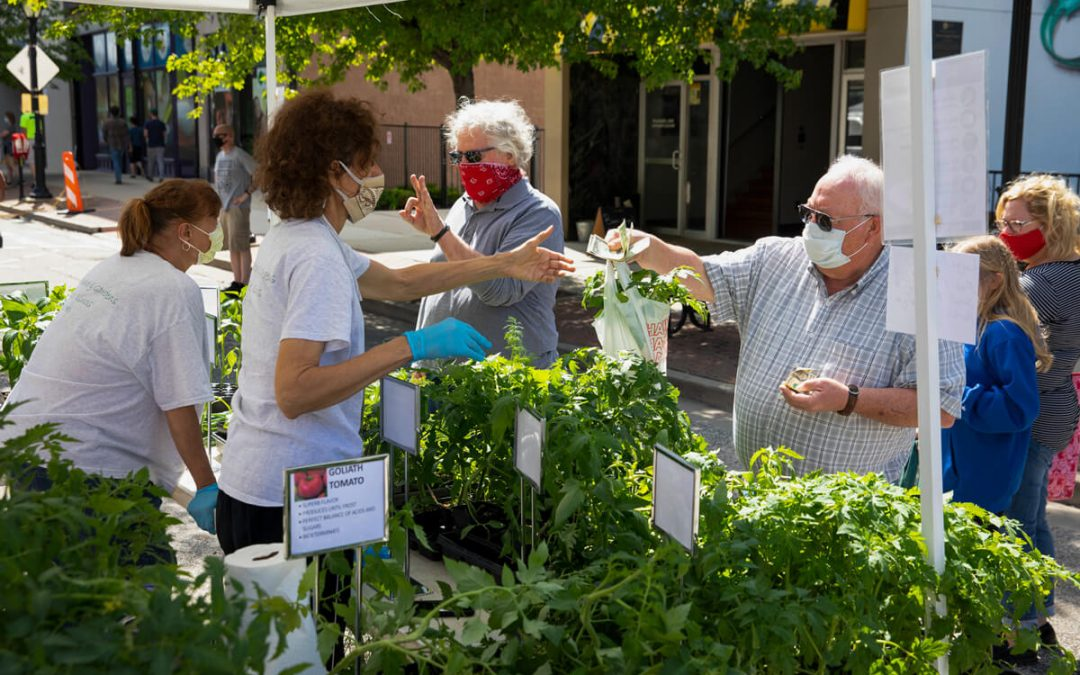 Grants Help Fund New Healthy Ways Card at Market